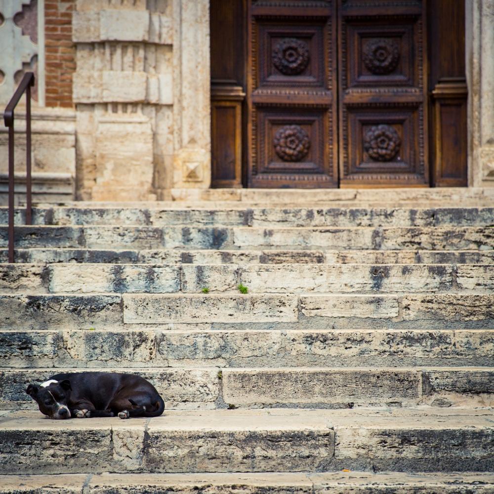 tuscany_2474