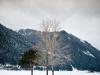 winter1-1-von-19
