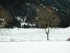 winter1-14-von-19