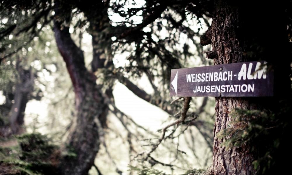weissenbach-1-von-1