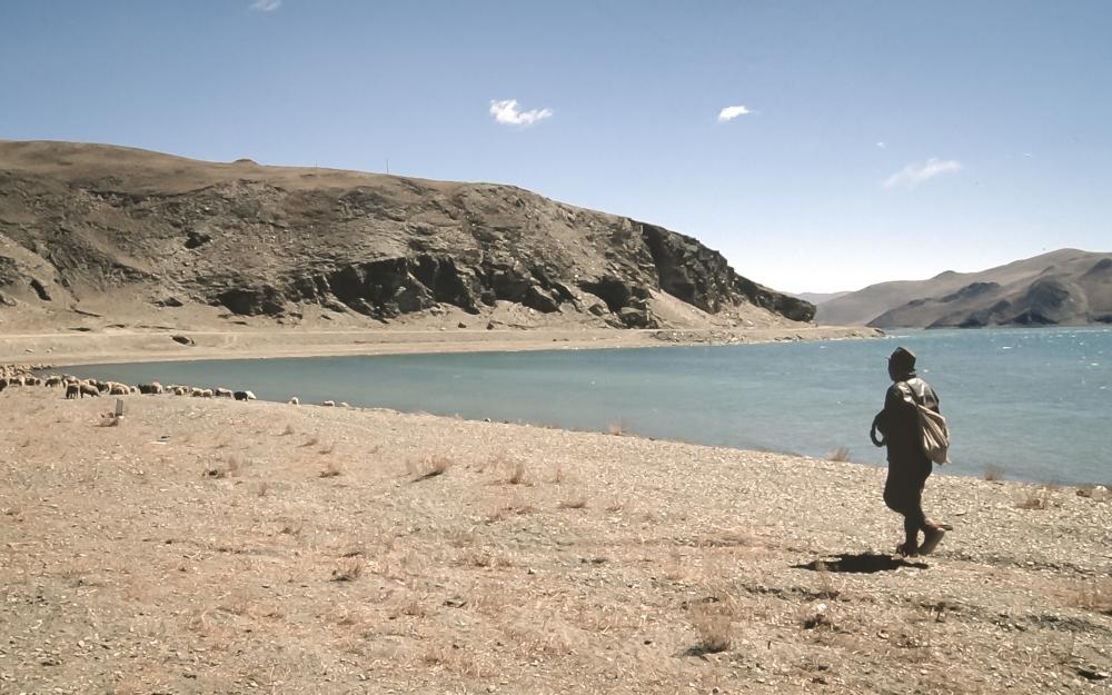tibet450