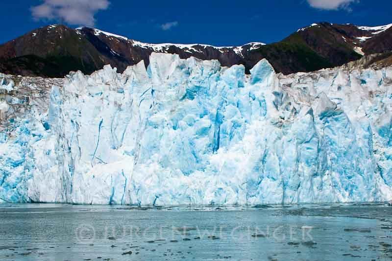 Bootstour zu den Gletschern im Tracy Arm Fjord