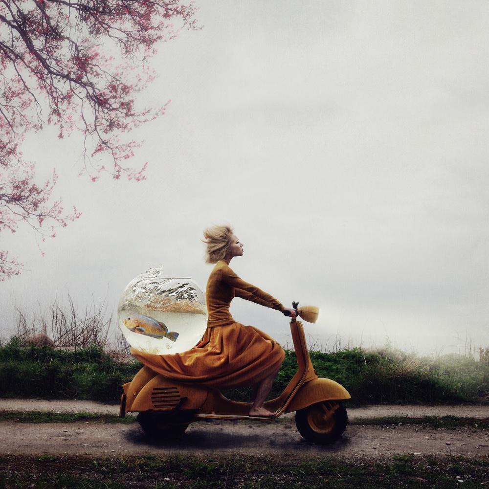 ©Kylli Sparre, Estonia, Winner Open Enhanced, 2014 Sony World Photography Awards